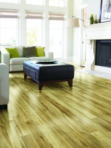 Laminate Floor Sales and Installation Clifton Park, NY
