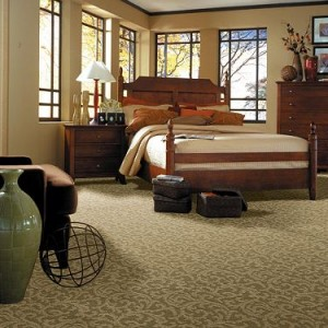 Shaw Tuftex carpet clifton park